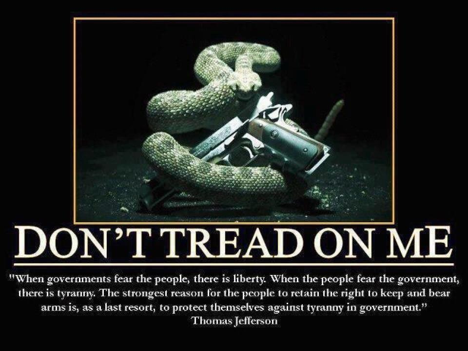 dont tread on me Dont Tread on Me