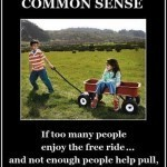 law-of-common-sense