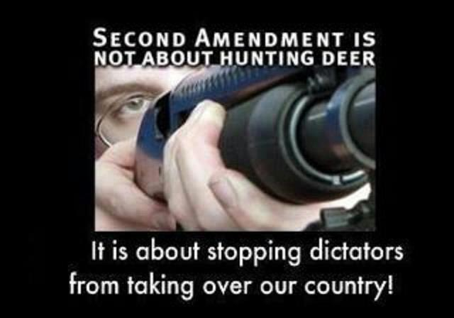 2nd amendment its not about deer hunting