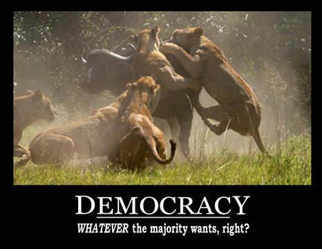 Democracy: Whatever the Majority Wants