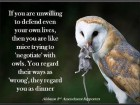 if-you-are-unwilling-to-defend-even-your-own-lives-then-you-are-like-mice-trying-to-negotiate-with-owls