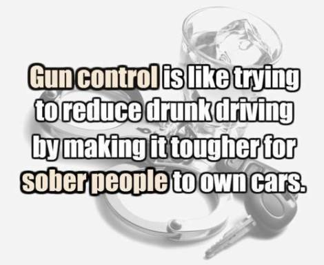 Satire essay on gun control