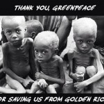 thank-you-greenpeace-for-saving-us-from-golden-rice