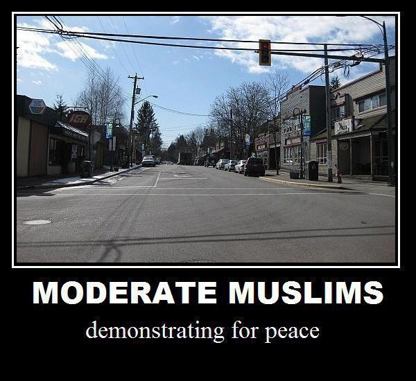 moderate-muslims-demonstrating-for-peace