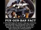 Fun Gun-ban Fact