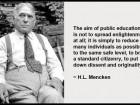 The Aim of Public Education