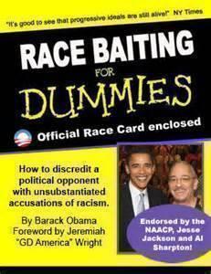 race-baiting-for-dummies-2