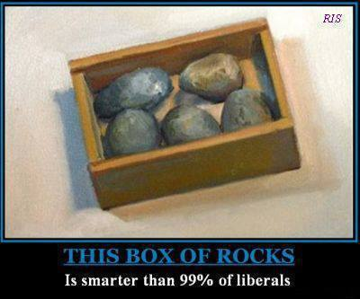 this-box-of-rocks-is-smarter-than-99-of-liberals
