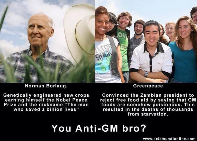 you-anti-gm-bro