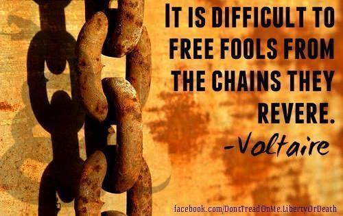 it-is-difficult-to-free-fools-from-chains-they-revere