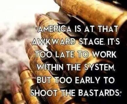 america-is-at-that-awkward-stage-its-too-late-to-work-within-the-system-but-too-early-to-shoot-the-bastards