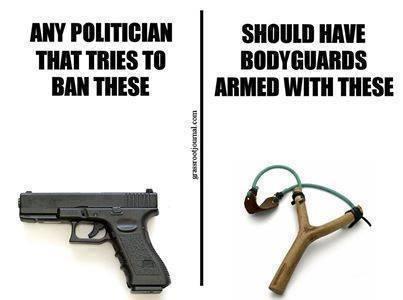 justice-for-gun-grabbing-politicians