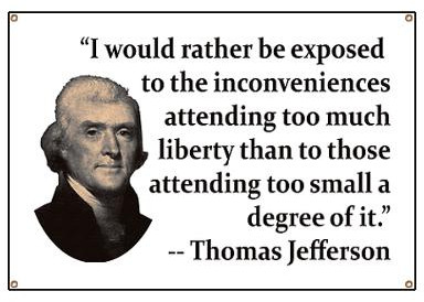 i-would-rather-be-exposed-to-the-inconveniences-attending-too-much-liberty-than-to-those-attending-too-small-a-degree-of-it