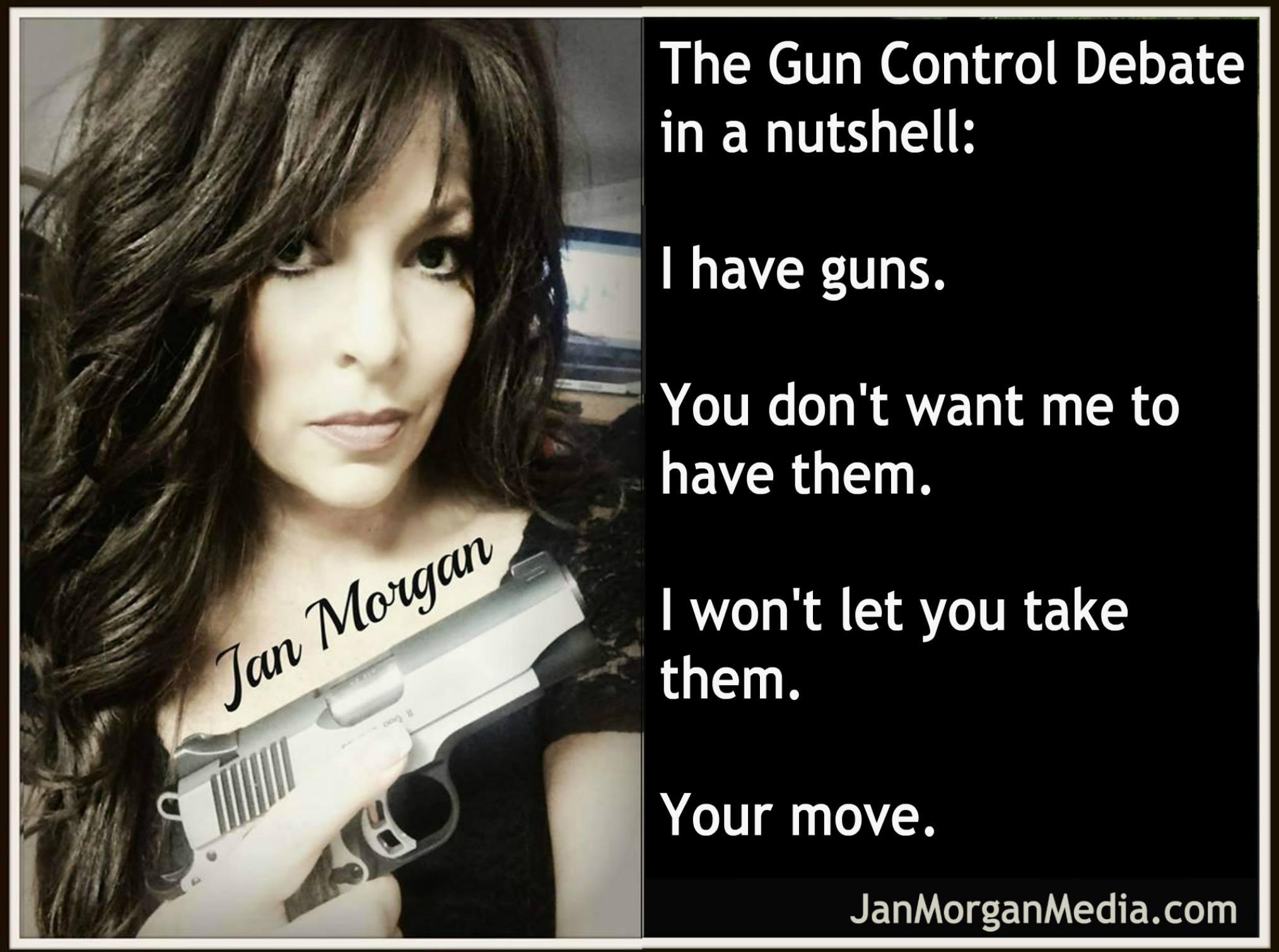 the-gun-control-debate-in-a-nutshell