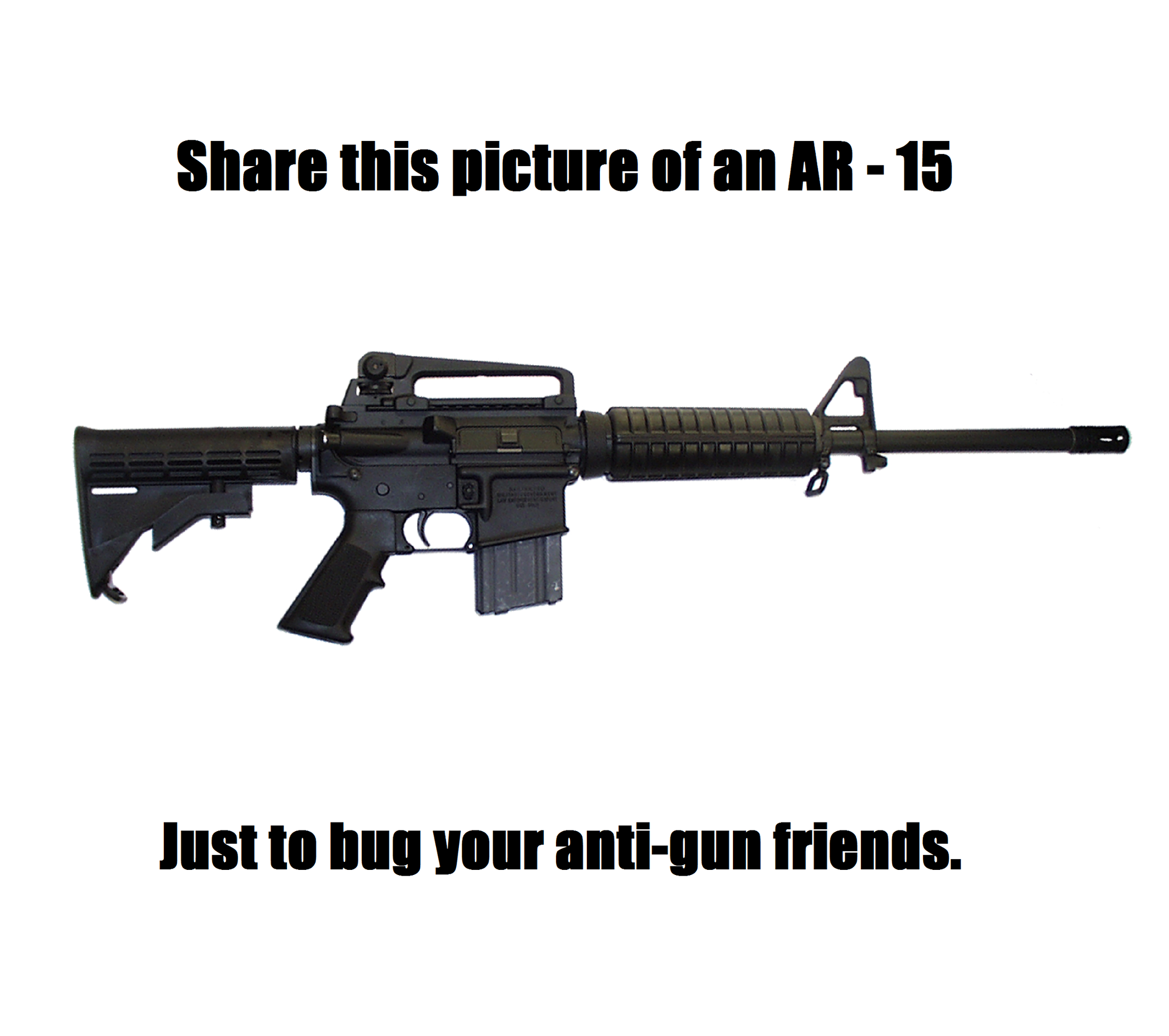 share-this-picture-of-an-ar-15-just-to-bug-your-anti-gun-friends