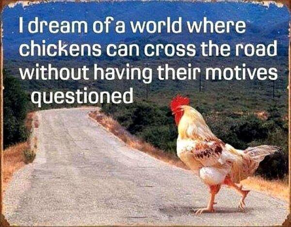 i-dream-of-a-world-where-chickens-can-cross-the-road-without-having-their-motives-questioned