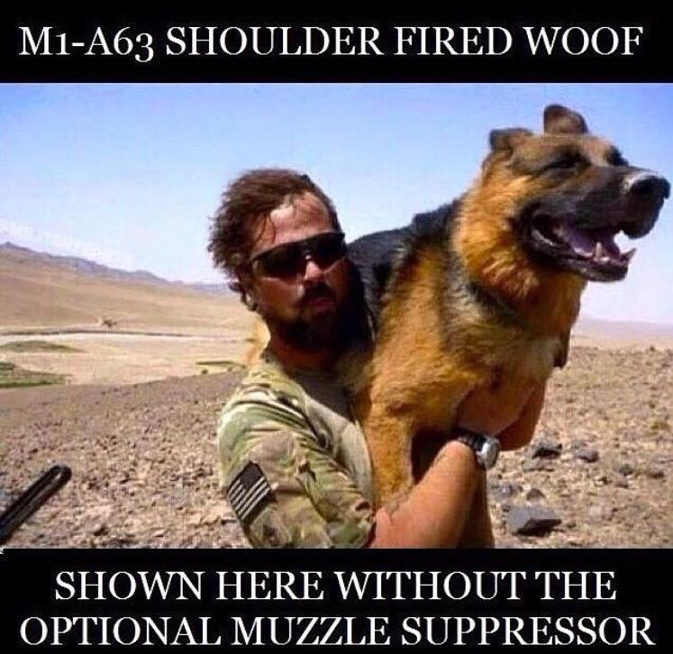 m1-a63-shoulder-fired-woof