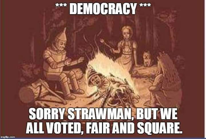 democracy-sorry-strawman-but-we-all-voted-fair-and-square